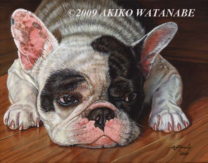 French Bulldog (11x14 original dog painting)