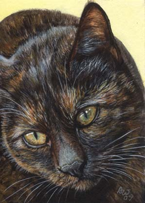 Calico #2 (Calico Cat ACEO)