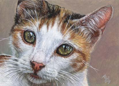 Calico #4 (Calico Cat ACEO)