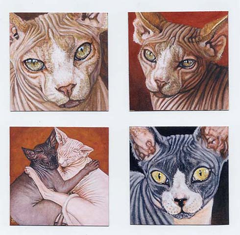 Set of 4 Sphynx Sphinx Cat Fridge Magnets