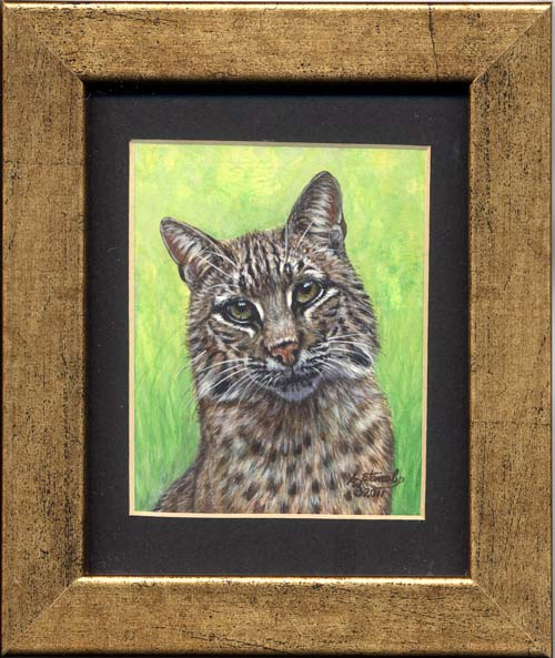 Bobcat (big cat miniature painting)