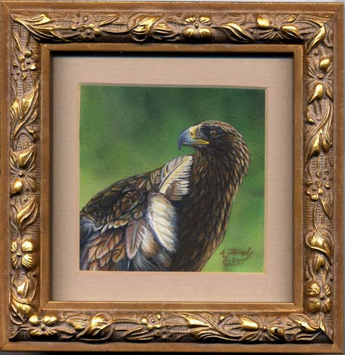 Wingless Beauty (golden eagle miniature painting)